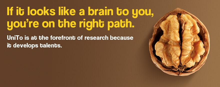 If it looks like a brain to you, you're on the right path